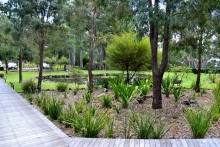 Boardwalk and Gardens