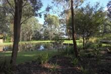 Wild Edge Gardens.