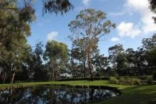 Wild Edge Gardens